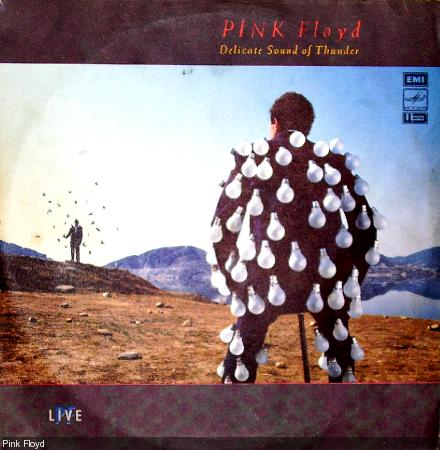 Pink Floyd - Delicate Sound of Thunber (live) (1988) 2LP