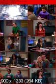 The Big Bang Theory [S06E12] HDTV.XviD-AFG