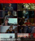 Will (2011) PL.DVDRip.XviD-BiDA / Lektor PL