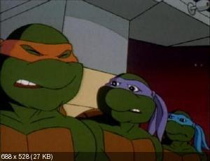 ��������� ������ [9-� �����] / Teenage Mutant Ninja Turtles (1995) DVDRip