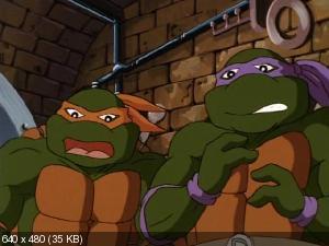 Черепашки ниндзя [10-й сезон] / Teenage Mutant Ninja Turtles (1996) DVDRip
