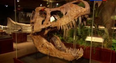 Правда и вымысел. Парк Юрского периода / Truth and fiction. Jurassic Park (2013) SatRip