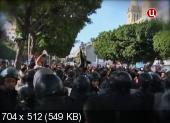Арабская весна. Революция была ошибкой? (2013)